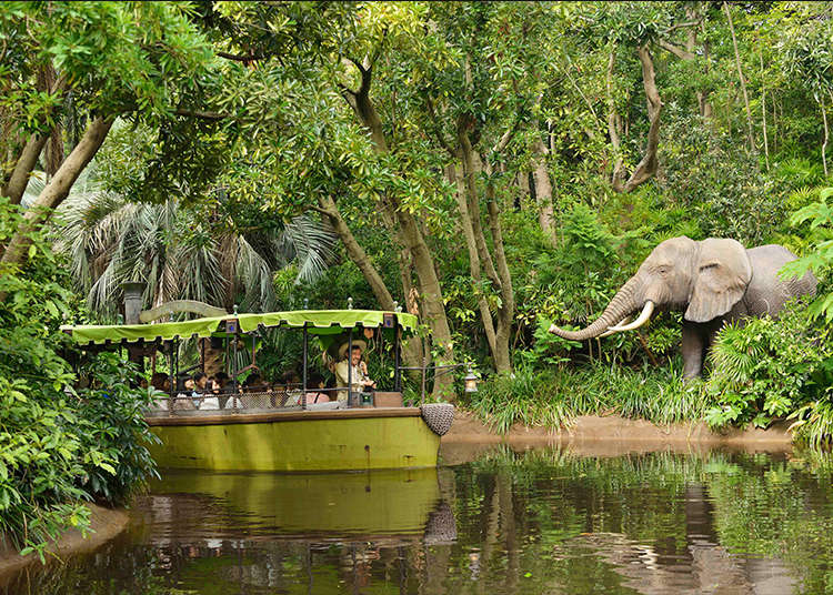 道地的刺激冒險「叢林巡航」
