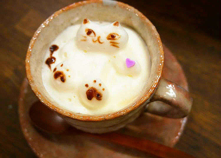 A Cat in My Latte?! Incredible Latte Art at Tokyo's Oshiage Nyanko Cafe