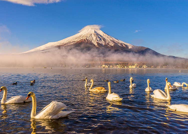 Penduduk dan muka bumi Jepun