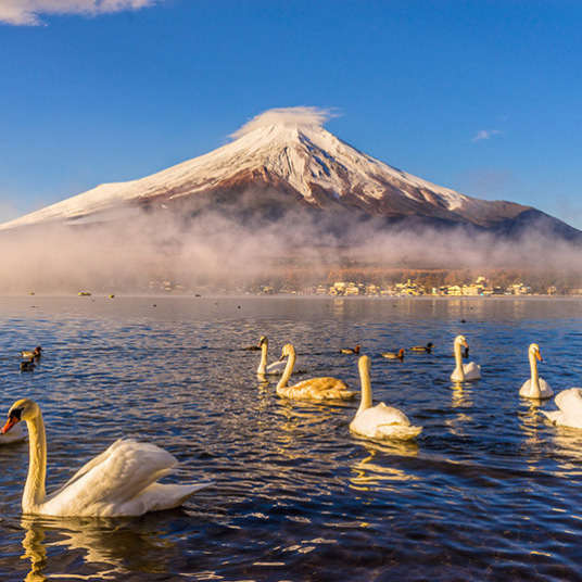 Mengenal Kondisi Geografi Jepang