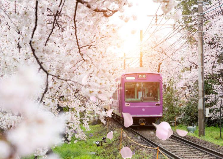 필수 교통편! 일본 전철 타는 법을 마스터해보자