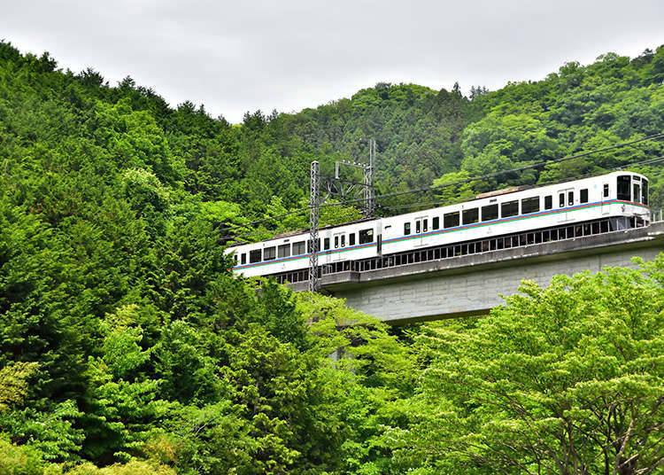 Seibu Railway's 1-day tickets