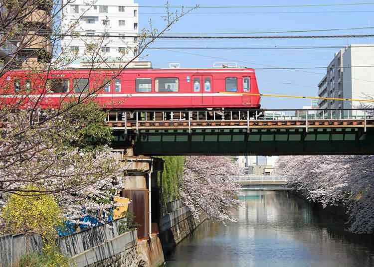ตั๋วโดยสารแบบ 1 วันโดยเคคิวเดนเทสึ (รถไฟของบริษัทเคคิว)