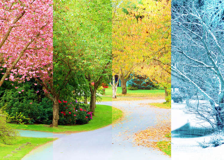 Japan's Weather & Four Seasons