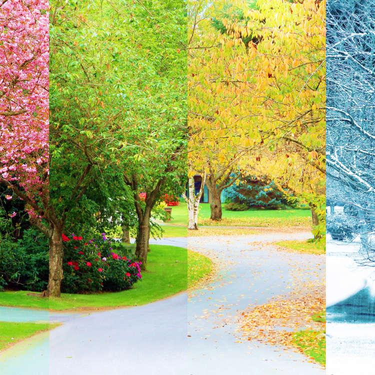 Iklim dan 4 musim di Jepun