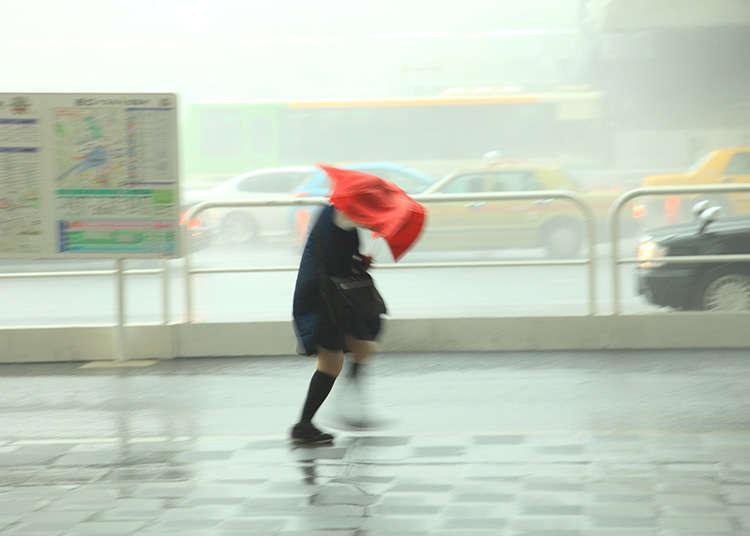 颱風的時期