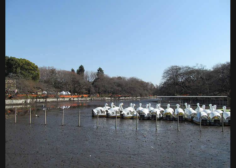 Mitaka-shi and the surrounding areas