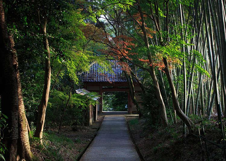 Sejarah agama utama di Jepun dan pandangan orang Jepun terhadap agama