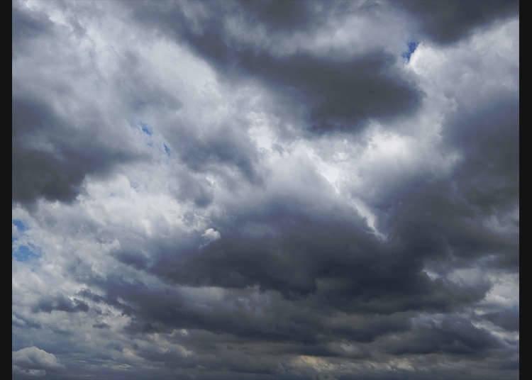 태풍의 이름은 국가마다 다르다?