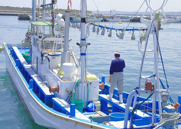 一直受到漁夫們守護的土地「銀座」