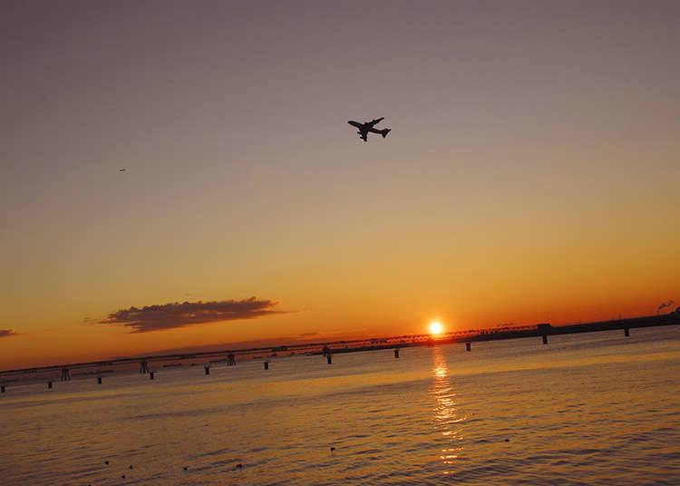 東京湾岸で夜明けの景色を楽しむ