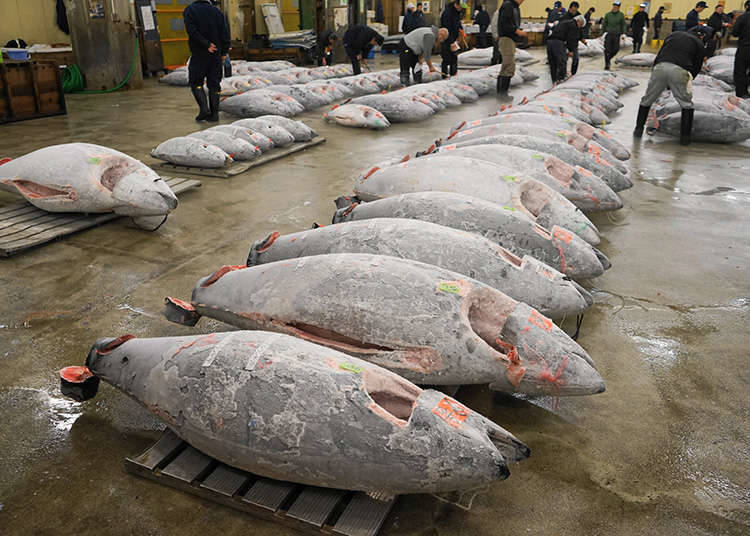 Bersiar-siar di sekitar kawasan Tsukiji, pasar yang terbaik di dunia.
