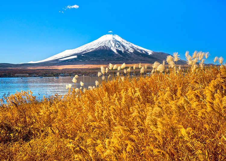 일본의 산들