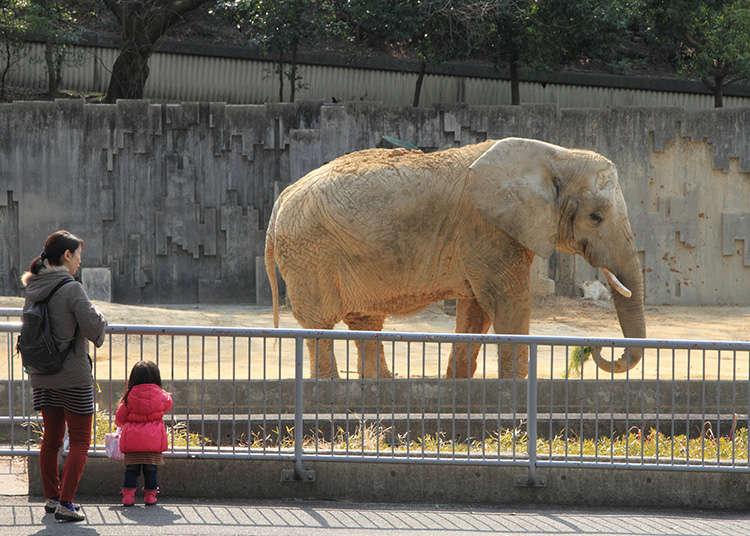 สวนสัตว์และพิพิธภัณฑ์สัตว์น้ำ