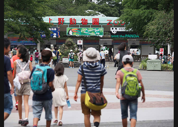 """Zoo Ueno"" yang terkenal"