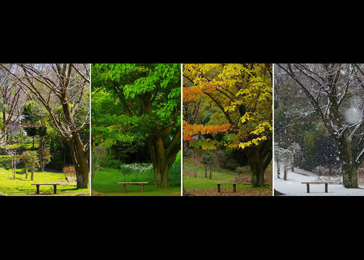 The four seasons in Japan