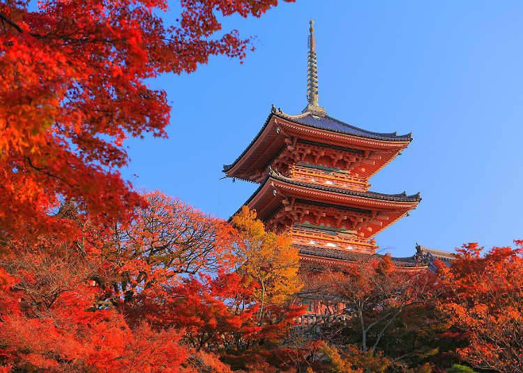 suasana empat musim di jepang live japan jepang perjalanan dan rh livejapan com 4 musim yang ada di jepang musim yang ada di jepang beserta bulannya