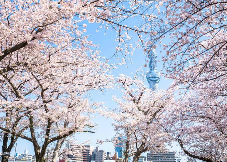 Perayaan Musim Bunga