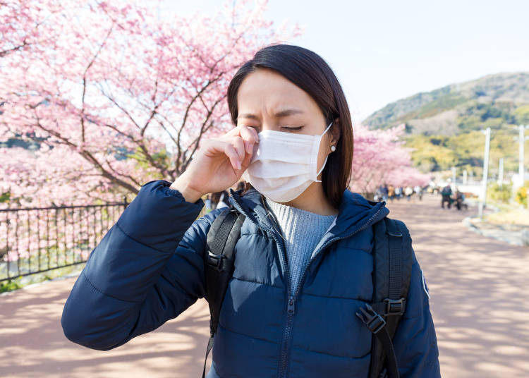 Kafunsho (Demam disebabkan alergi debu bunga)