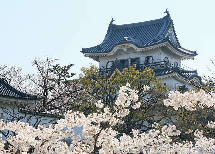 The Characteristics of Japanese Castles
