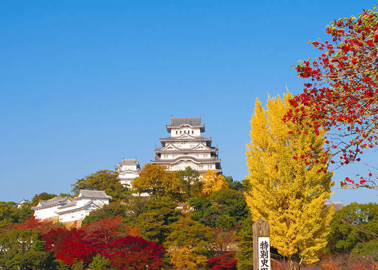 Keindahan Kastil-Kastil Jepang