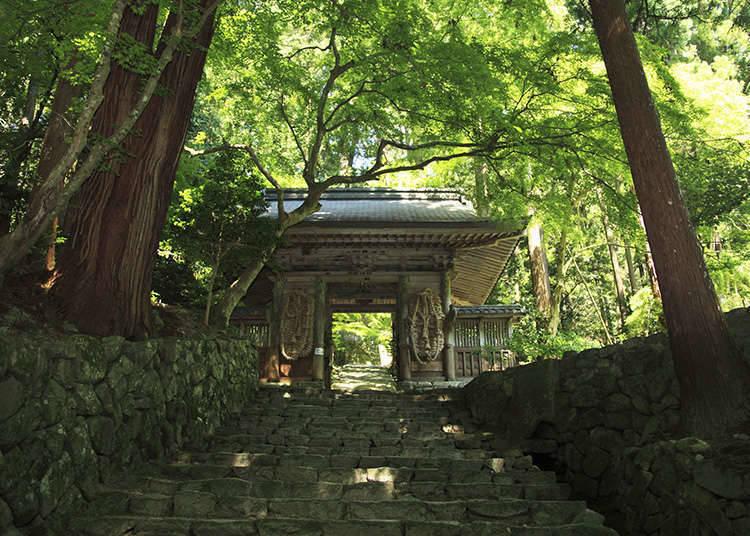 ชะจิอาโตะ และคิวเคได คืออะไร?