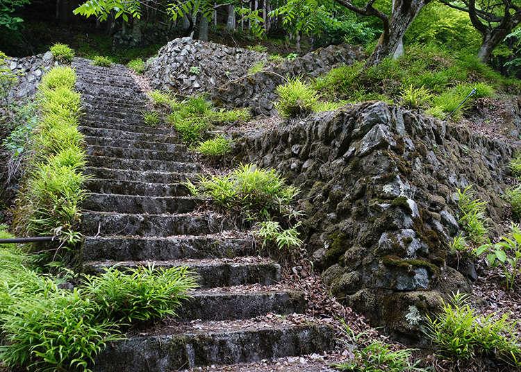ร่องรอยหมู่บ้านญี่ปุ่น