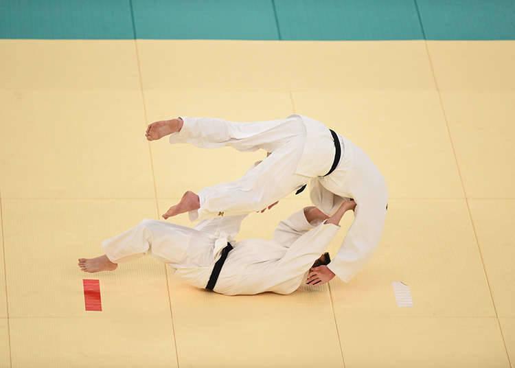 Kobujutsu: The Basics of Martial Arts