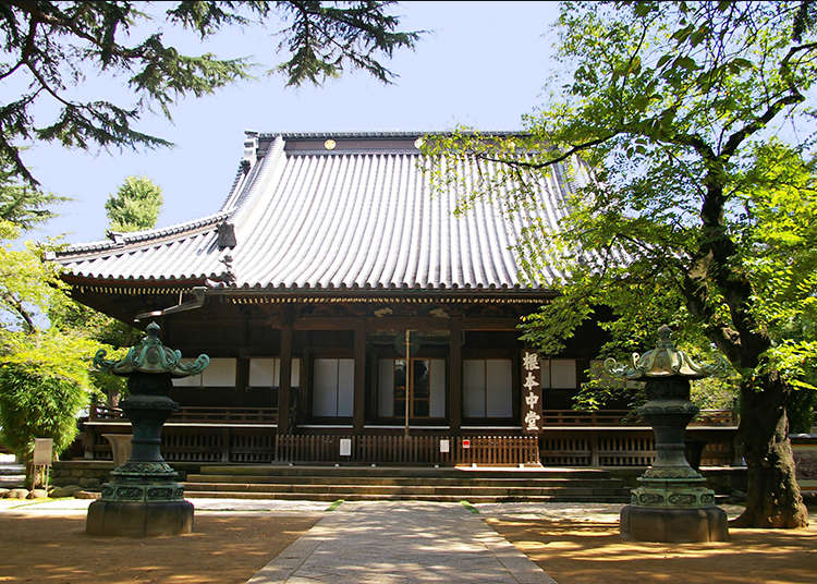 The reason why Yanaka is a temple district