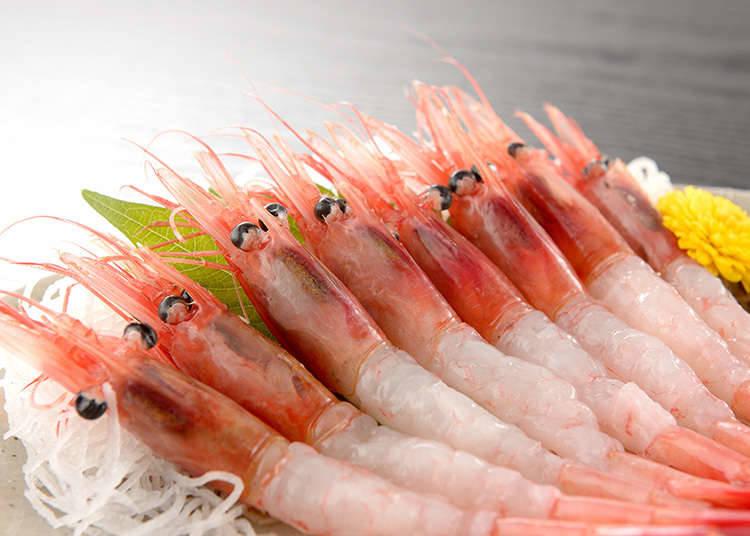 刺身的海鲜种类