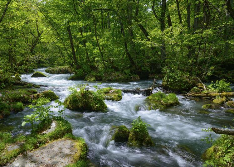 계곡, 계류, 강, 호수