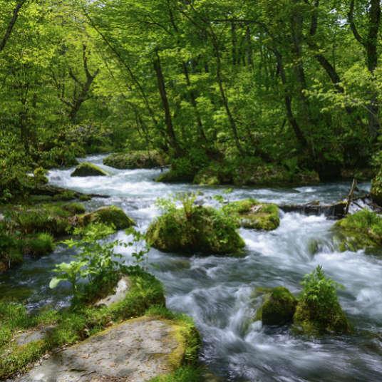 溪谷、溪流、河川、湖泊