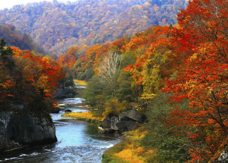 About Japanese valley and mountain stream