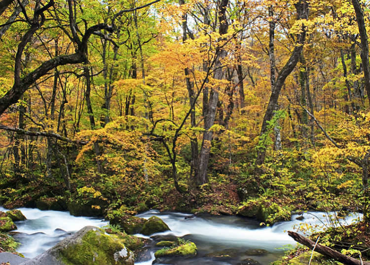 Famous valleys and mountain streams of Japan