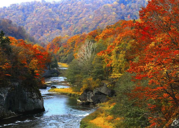 Apakah itu lembah dan alur sungai di Jepun