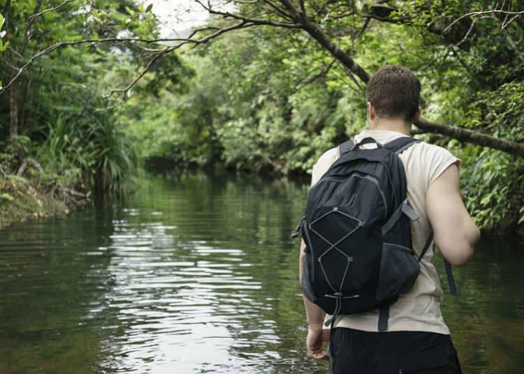 Cara menikmati lembah dan alur sungai