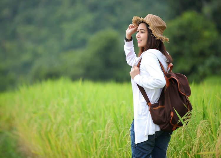 農村での観光