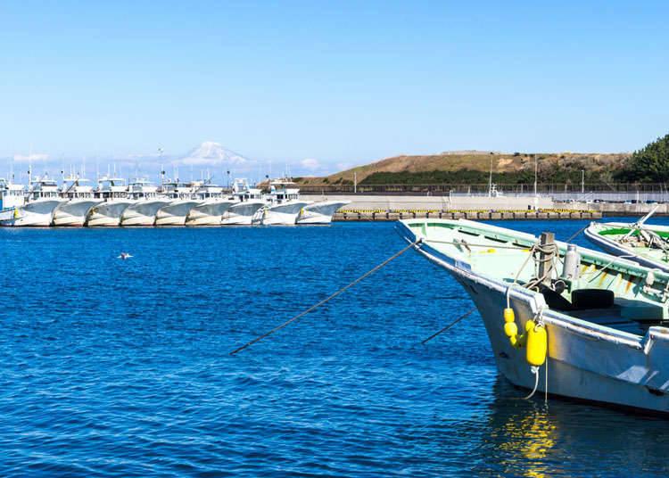 Marine Sports in Japan