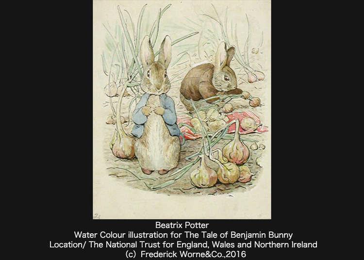 「彼得兔展」