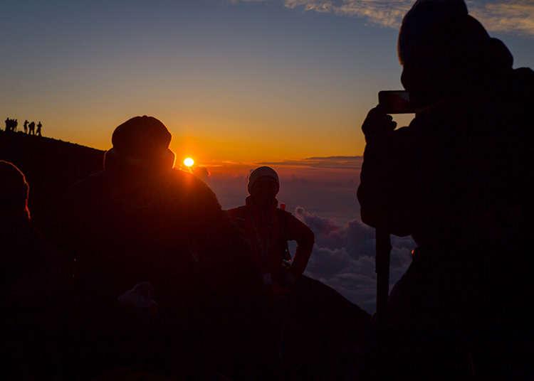 Watch the Sunrise