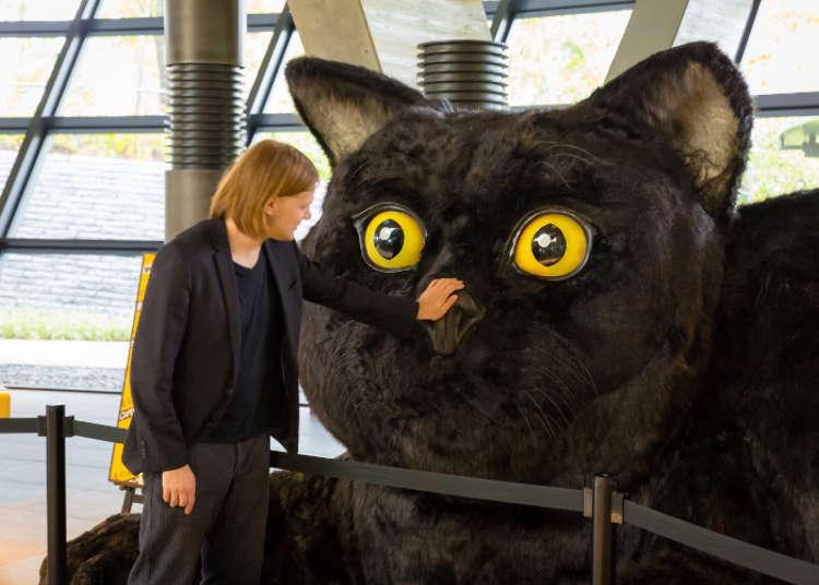 黒猫がお出迎え