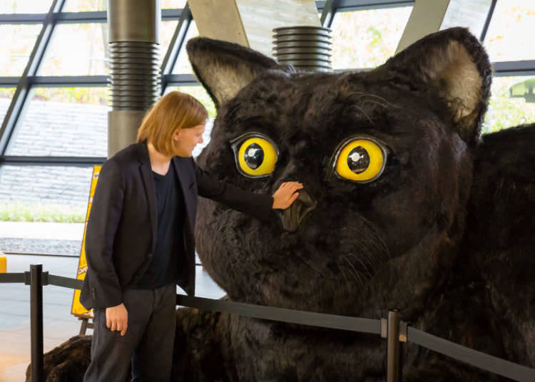 เจ้าแมวดำออกมาต้อนรับ