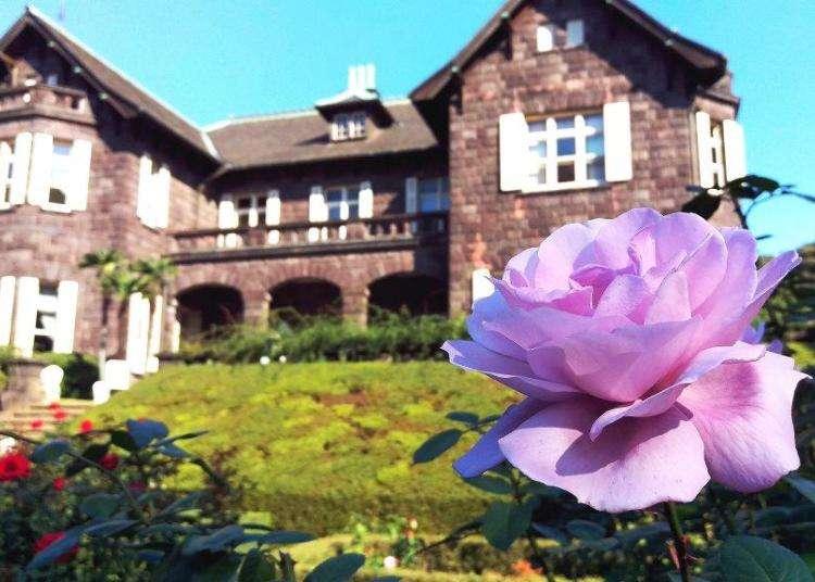 洋館とバラが織りなす見事な景観