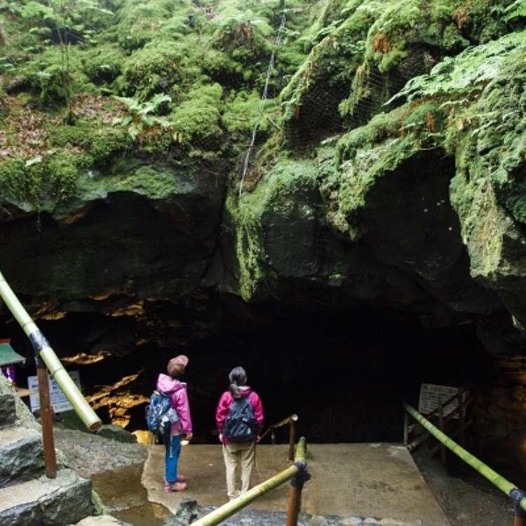 富士山秘境!巡遊熔岩洞窟與青木原樹海的散策行程推薦