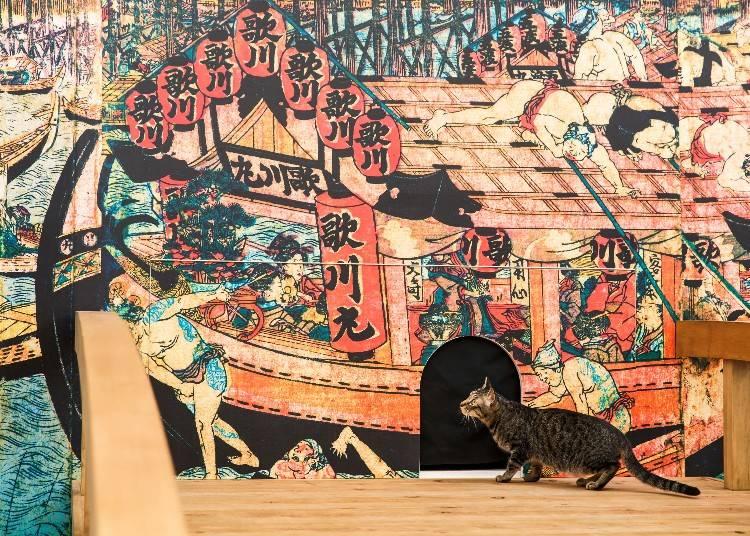 Edo Cat Cafe