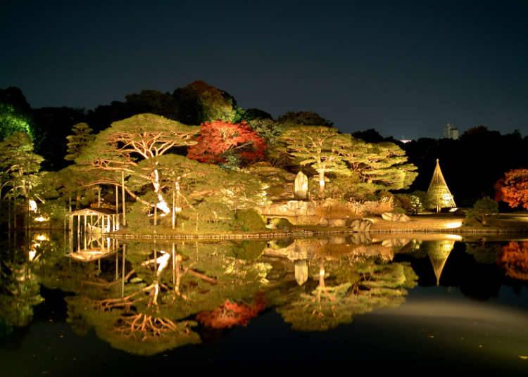 夜晚點燈也格外美麗的大名庭園