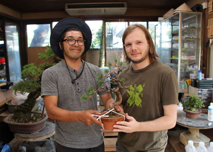 Bonsai: A Collaboration Between Nature and Imagination