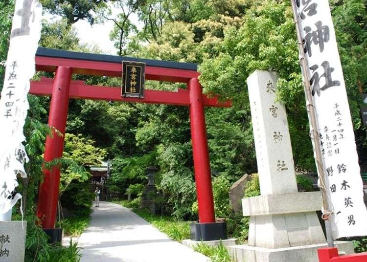 สถานที่ศักดิ์สิทธิ์ของอะตะมิ! เส้นทางเดินบริเวณรอบศาลเจ้าคิโนะมิยะ