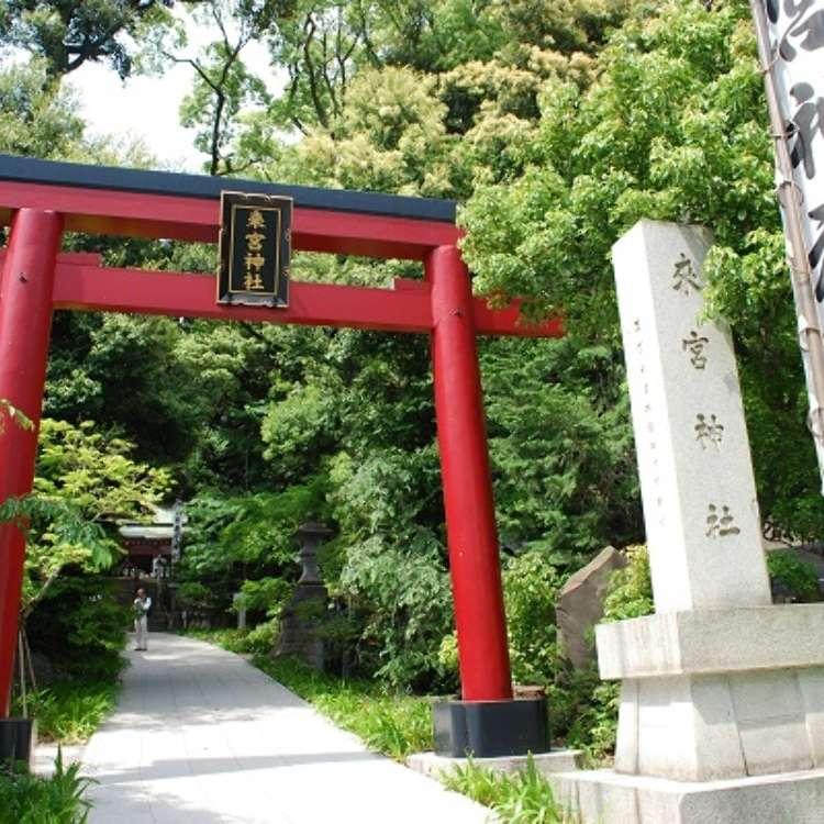 Tempat Kuasa Atami! Laluan Persiaran di Sekeliling Tokong Kinomiya