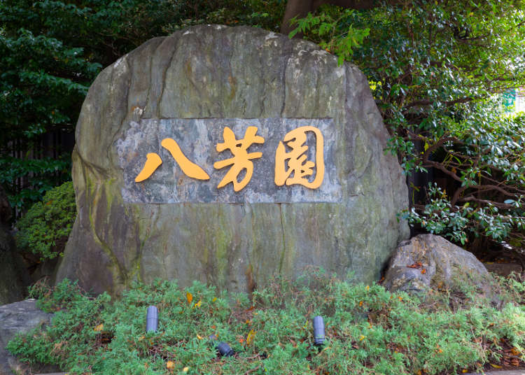 Discover Japanese traditions